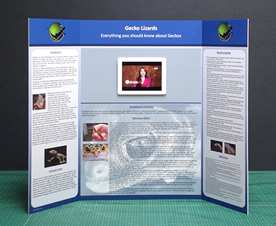 science poster board display