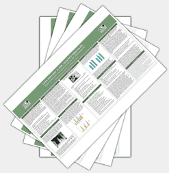 11x17 research poster handouts